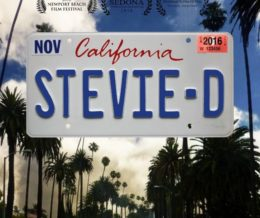 Stevie – D
