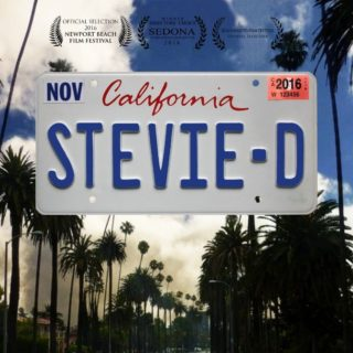 Stevie - D